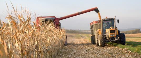 Bénéfices agricoles