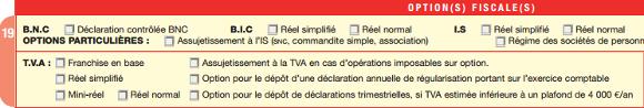 Cadre choix du régime de TVA formulaire M0