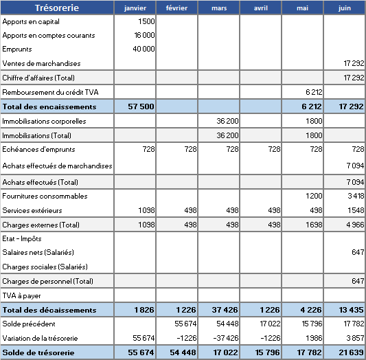Exemple de budget de trésorerie