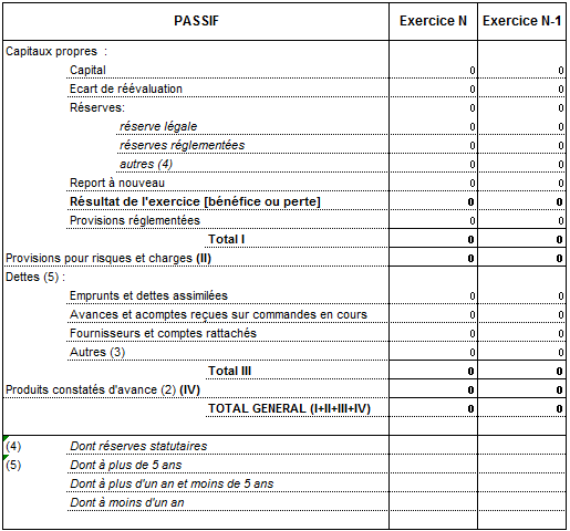 exemple de passif avant répartition (système abrégé)
